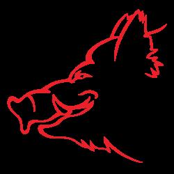Boar-Head-2
